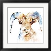Framed Watercolour Ram