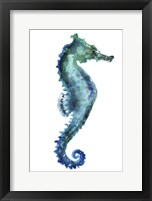 Framed Sea Horse