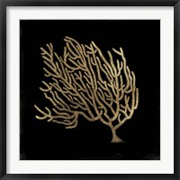 Framed Gold Coral II
