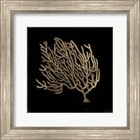 Framed Gold Coral II