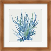 Framed Blue and Green Coral II