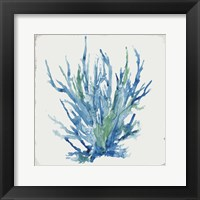 Blue and Green Coral II Framed Print