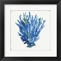 Blue and Green Coral III Framed Print