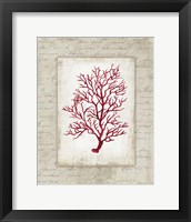 Framed Red Coral III Border