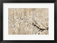 Framed Silver Apple Blooms