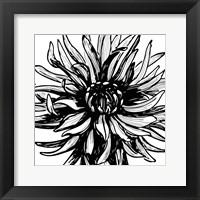 Framed Floral Outlines II
