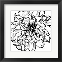 Framed Floral Outlines III