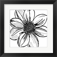 Framed Floral Outlines I