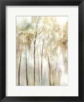 Framed Sapling I