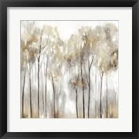 Framed Grace Land