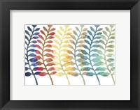 Framed Fresh Ferns
