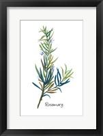 Framed Rosemary I