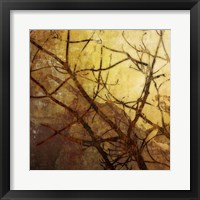 Framed Ombre Branches I