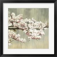 Framed Blossoms