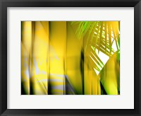 Framed Yellow Shades