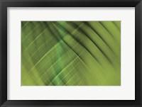 Framed Tie Dye IV