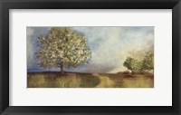 Framed Apple Orchard