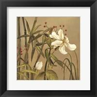 Framed Bamboo Beuaty I