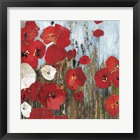 Framed Passion Poppies I
