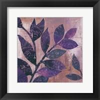 Framed Viola I