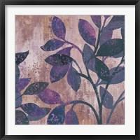 Framed Viola II
