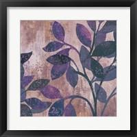 Viola II Framed Print