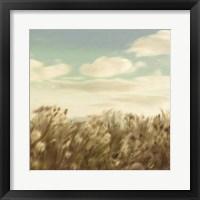Framed Dandelion Field