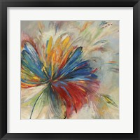 Framed Passion Flower