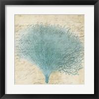 Framed Blue Coral III