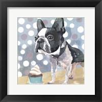Framed Pug Birthday