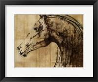 Framed Stallion I - Print on Demand