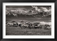 Framed Mountain Range Mavericks