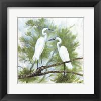 Framed Herons