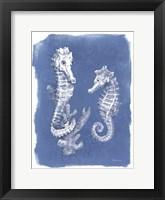 Coastal Sea Life V Framed Print