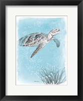 Framed Coastal Sea Life I