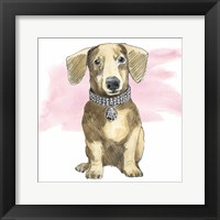 Framed Glamour Pups IX on Pink