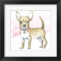 Framed Glamour Pups VII