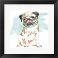 Glamour Pups X Framed Print
