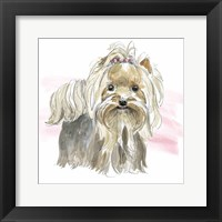Glamour Pups XII Framed Print