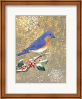 Framed Winter Birds Bluebird Color