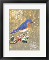 Framed Winter Birds Bluebird Color
