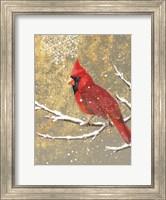 Framed Winter Birds Cardinal Color