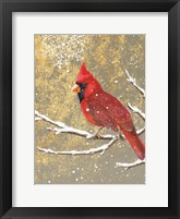 Framed Winter Birds Cardinal Color