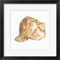 Golden Treasures III on White Framed Print