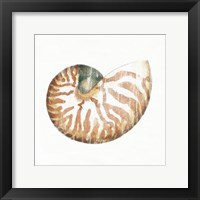Golden Treasures IV on White Framed Print