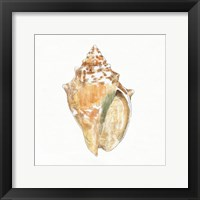 Golden Treasures V on White Framed Print