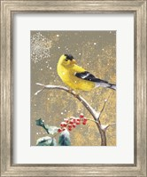Framed Winter Birds Goldfinch Color