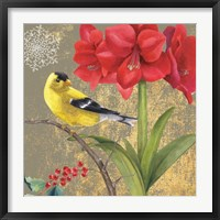 Framed Winter Birds Goldfinch Collage
