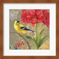 Framed Winter Birds Goldfinch Collage