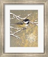 Framed Winter Birds Chickadee Color